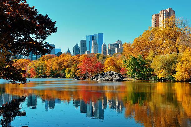 Central Park im Herbst – Foto