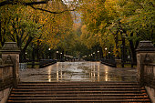 Views of Central Park foliage during autumn season in New York City.