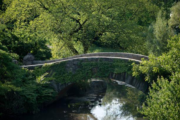 Central Park Bridge in Summer stock photo