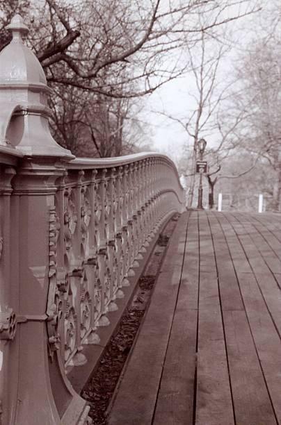 Central Park Bridge stock photo