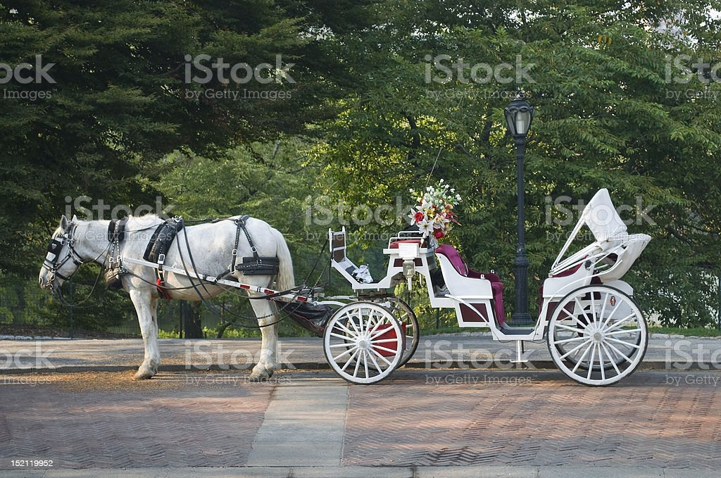 Central Park Buggy stock photo