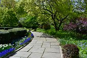 Early spring at the Central Park Conservatory Garden