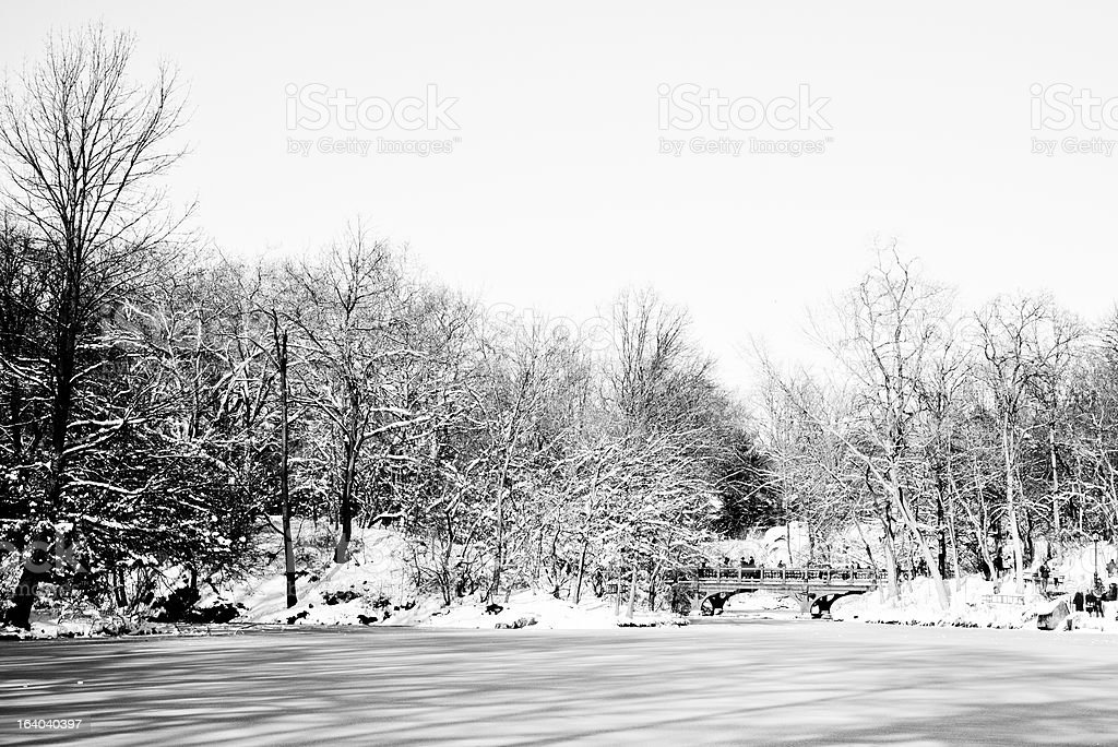 Central Park Covered in Snow royalty-free stock photo