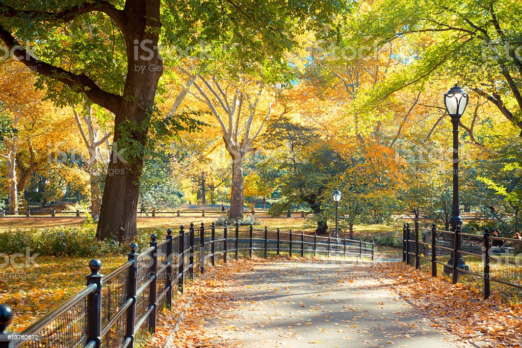 Central Park Fall stock photo