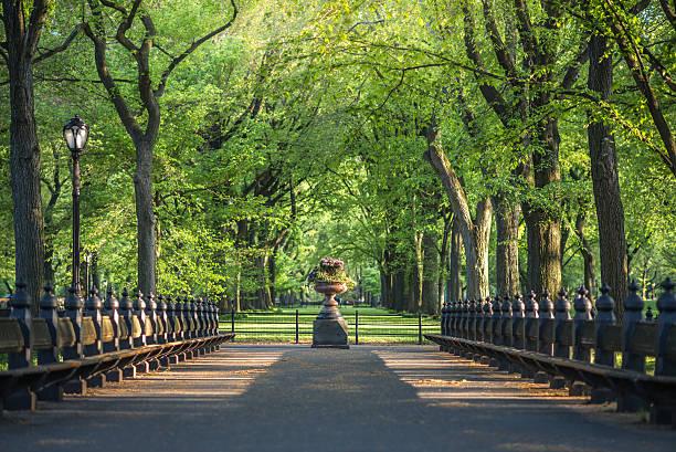 centrum park, obraz centrum handlowe obszarze w centrum park - central park manhattan zdjęcia i obrazy z banku zdjęć