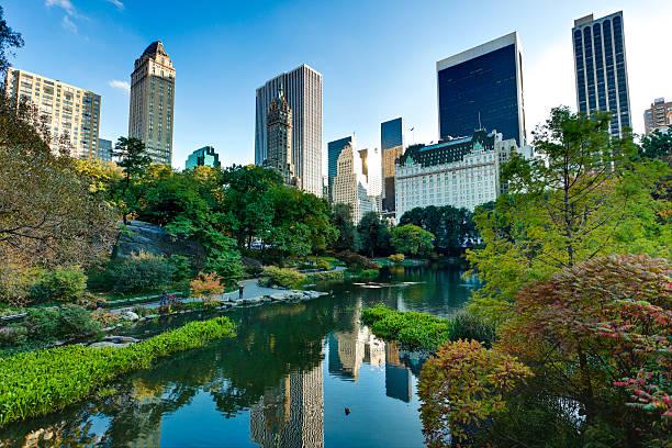 central park w nowym jorku - central park manhattan zdjęcia i obrazy z banku zdjęć