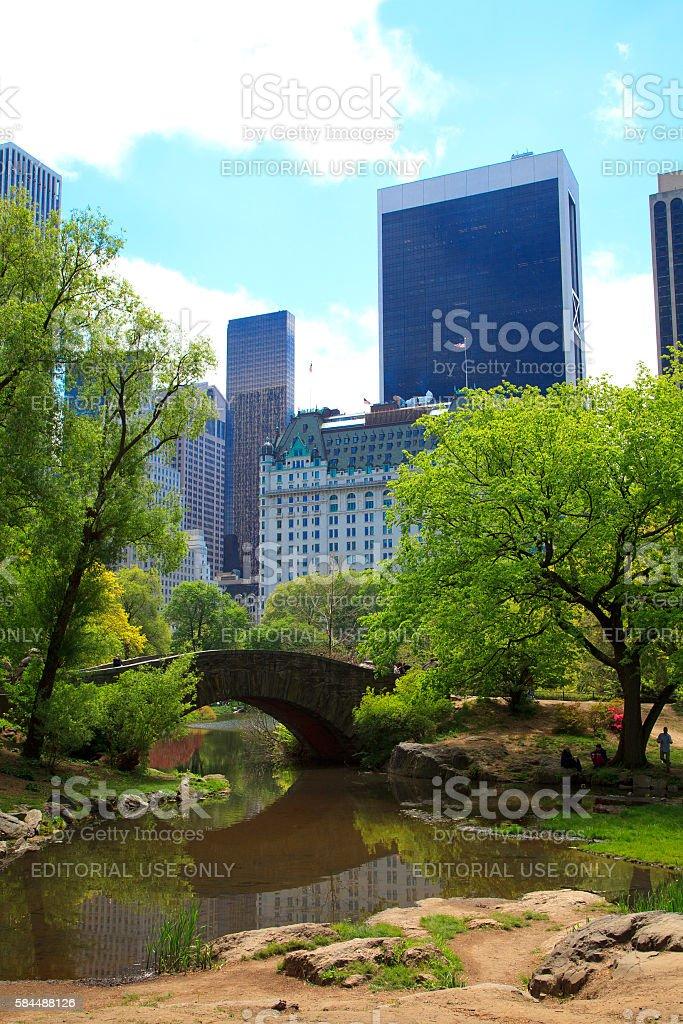 Central Park in Spring stock photo