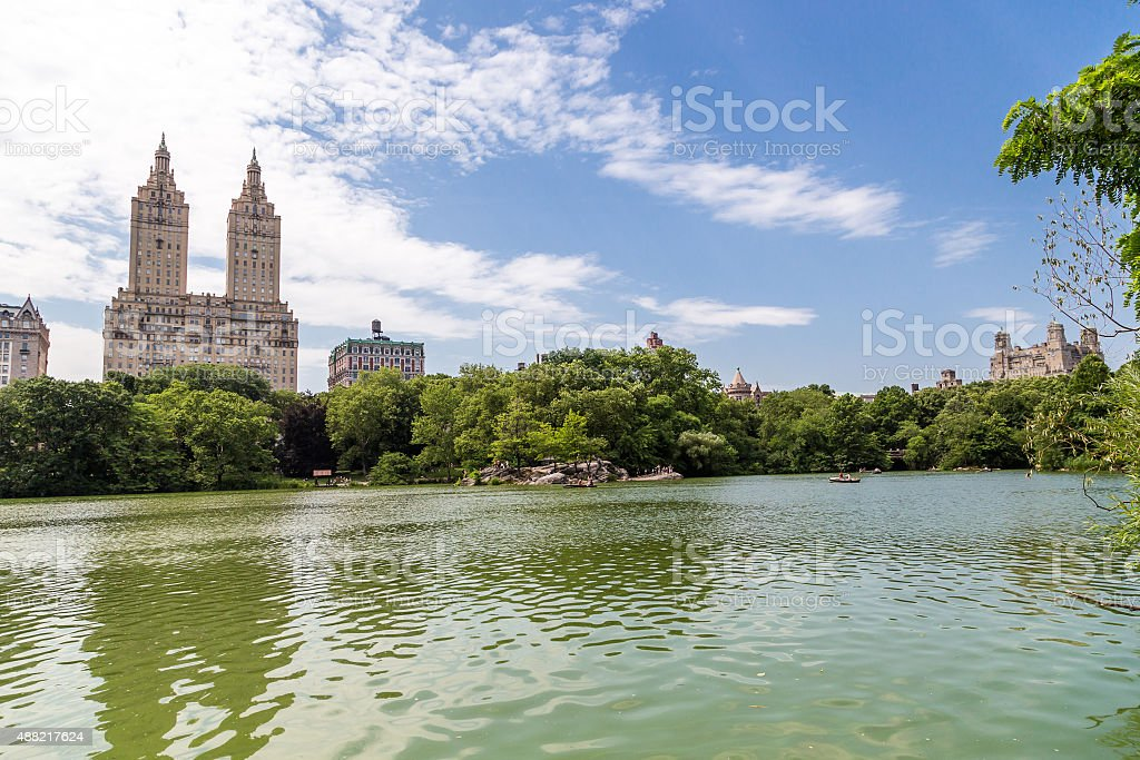 Central park in summer, NYC. stock photo