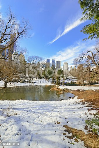 istock Central Park in the Snow. Manhattan, New York City 484012313