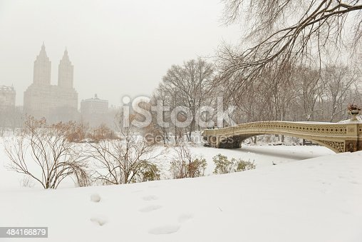 istock Central Park in the Snow. Manhattan, New York City 484166879