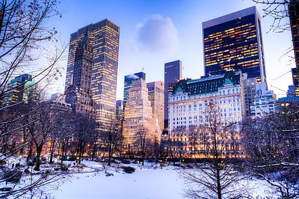 central parku w zimę - central park manhattan zdjęcia i obrazy z banku zdjęć