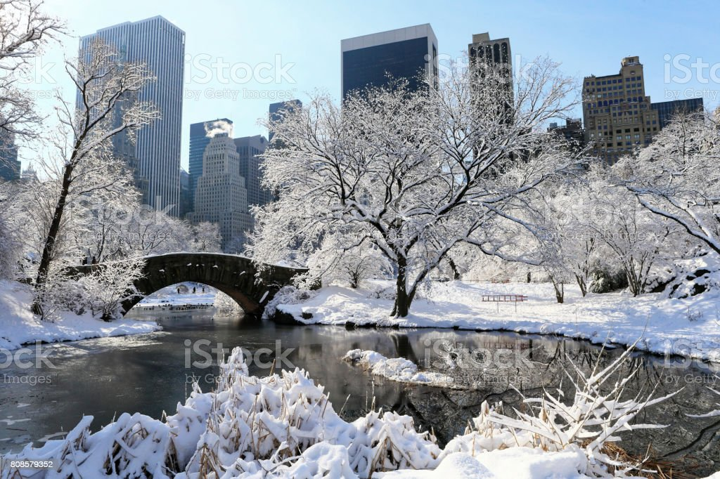 Central Park in Winter stock photo