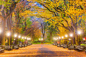 Central Park at The Mall in New York City during autumn dawn.