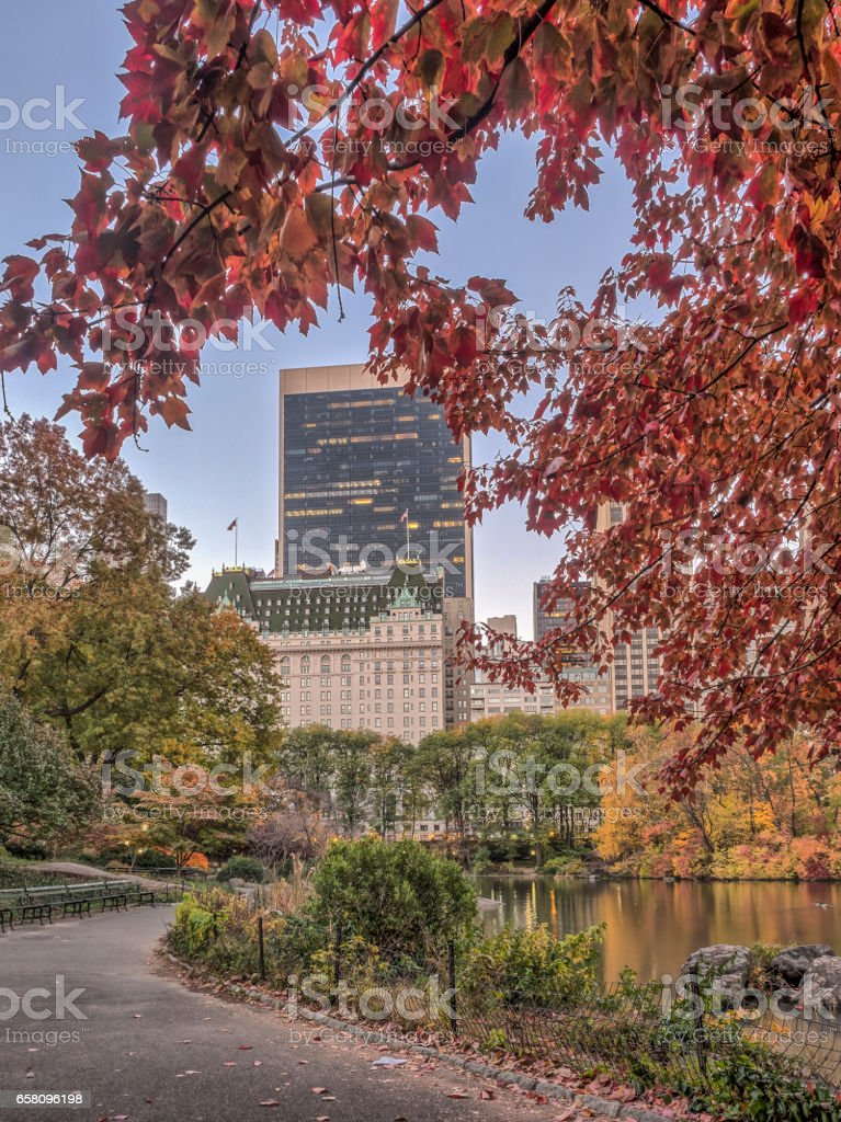 Central Park, New York City autumn royalty-free stock photo
