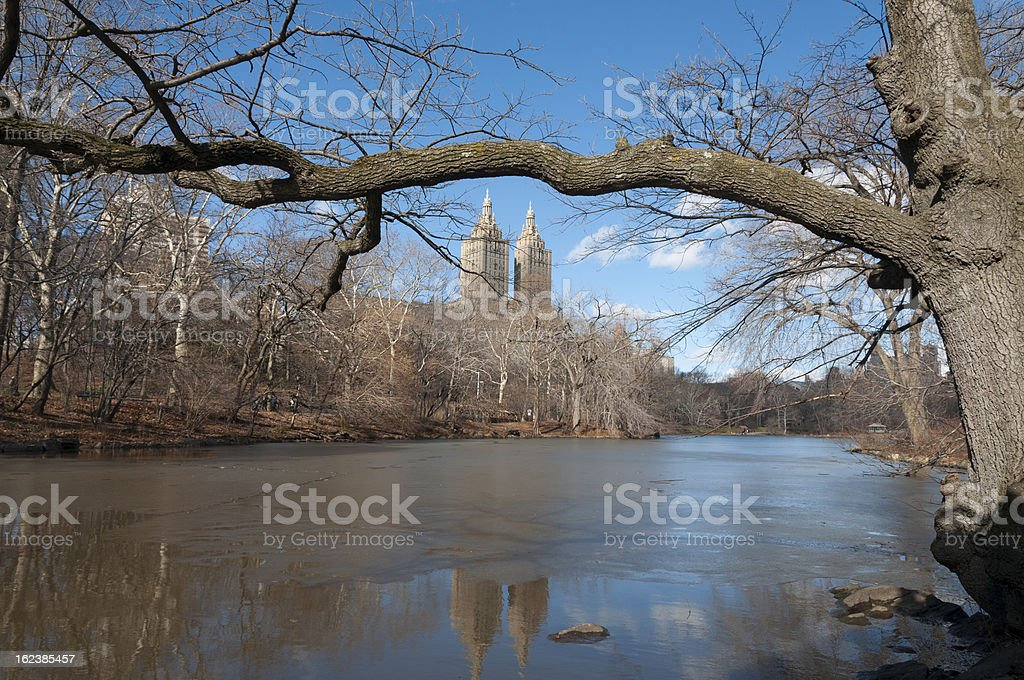 Central Park, New York City royalty-free stock photo