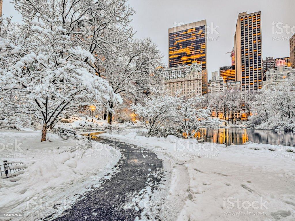 Foto De Neve De Central Park New York City E Mais Fotos De Stock
