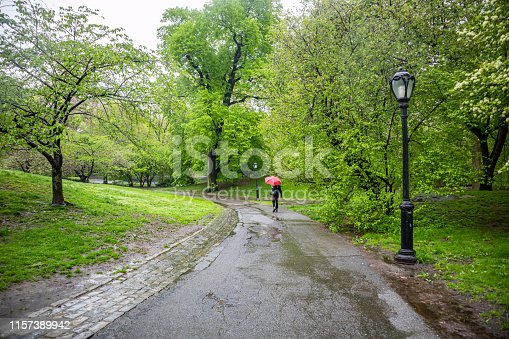 Spring rain in Central Park, New York city. Woman walking on a path holding a red color umbrella