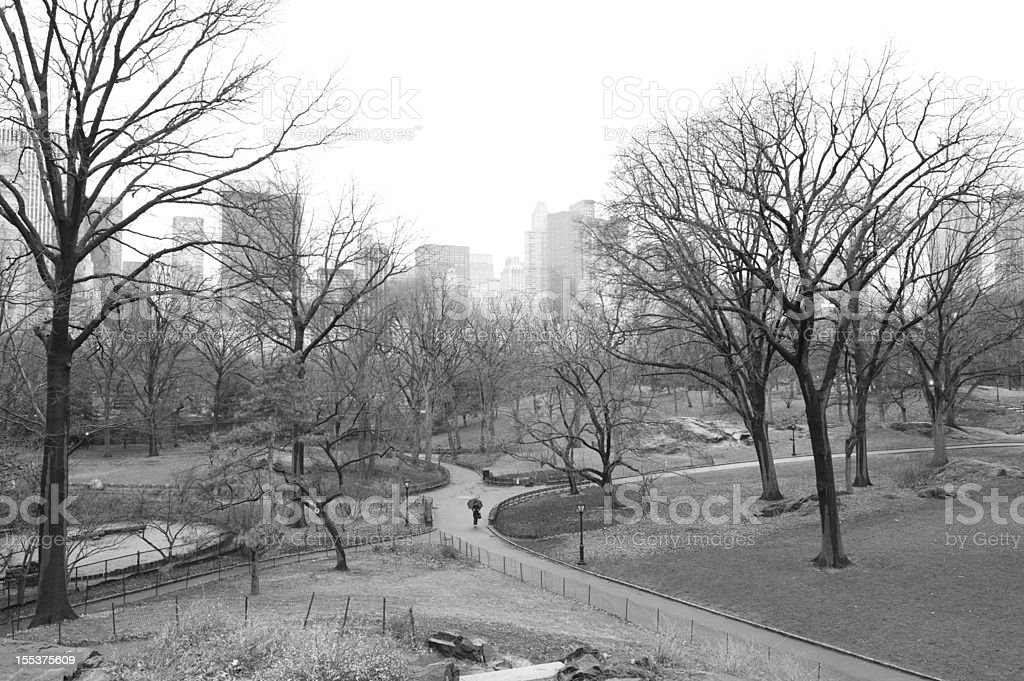 Central Park of New York royalty-free stock photo