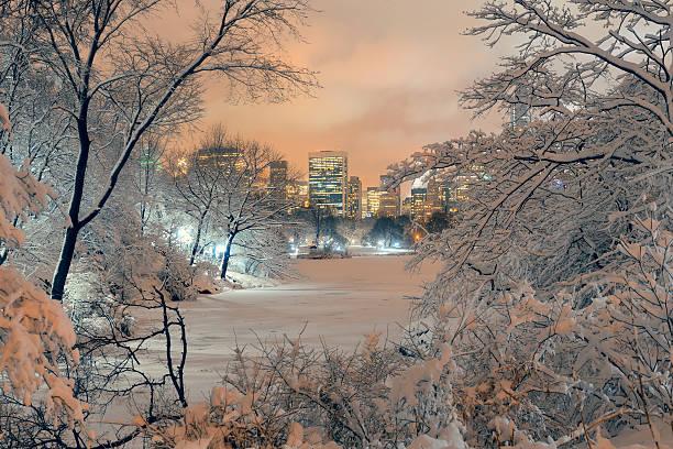 central park zimowy - central park manhattan zdjęcia i obrazy z banku zdjęć