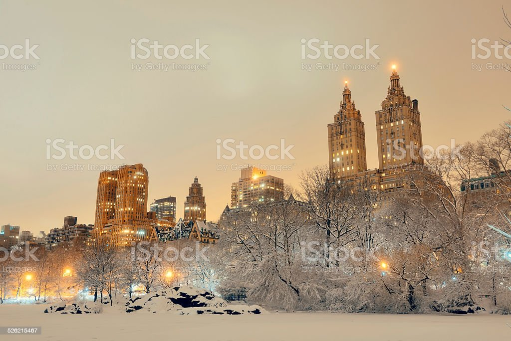 Central Park winter stock photo