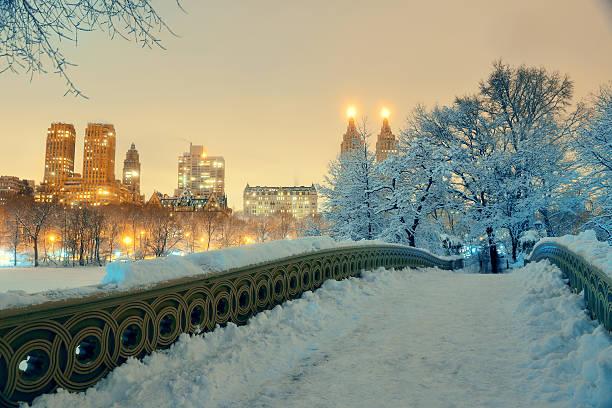 """central park l """"hiver  - new york photos et images de collection"""