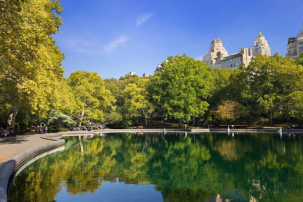 central park mit einem see und pflanzen farben, new york city. - teichfiguren stock-fotos und bilder