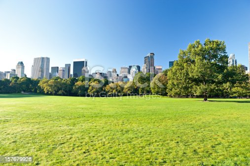 empty green meadow of central park with skyscrapers of manhattanhttp://www.amriphoto.com/istock/lightboxes/themes/travel.jpg