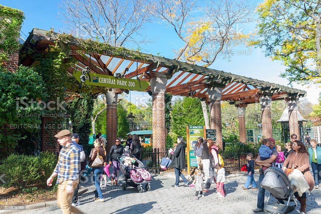 Central Park Zoo stock photo