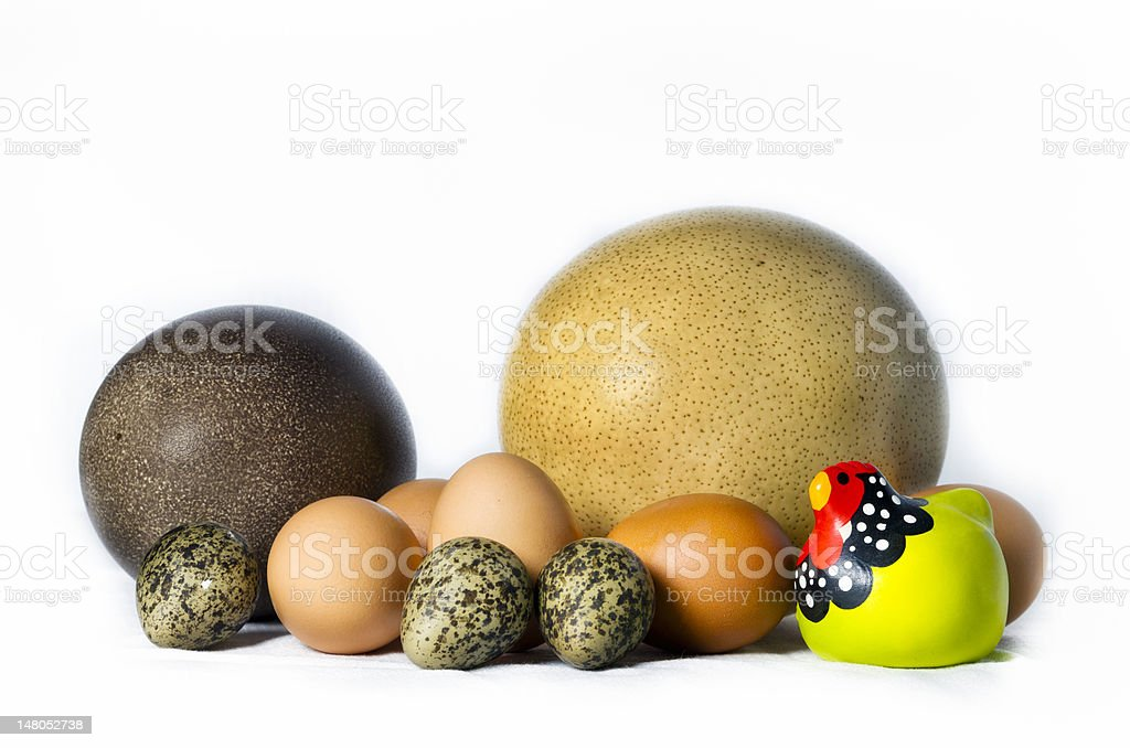 Ceramic chicken with variety of eggs stock photo