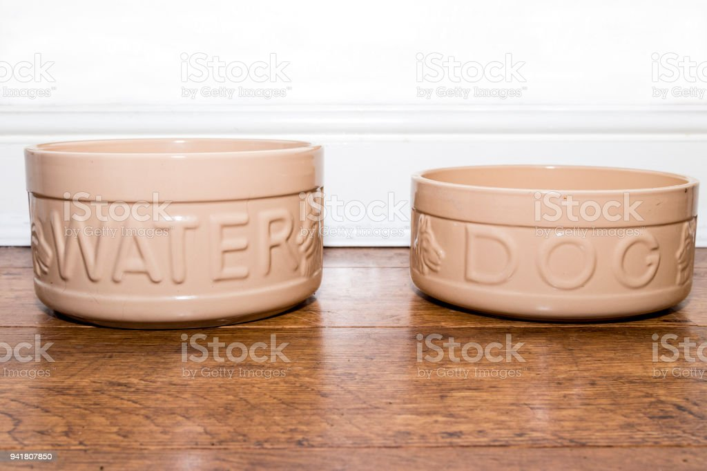Ceramic dogg food and water bowl stock photo