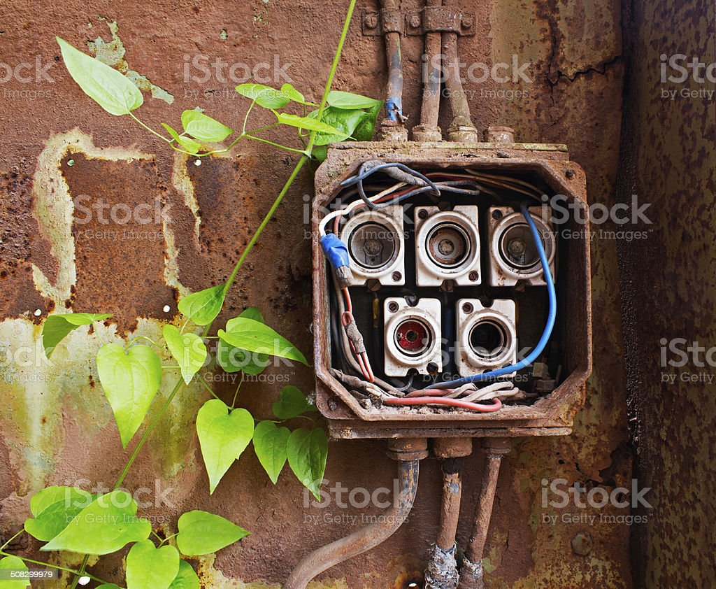 Ceramic Fuses Old Box Wiring Library In Electric And Green Ivy Royalty Free Stock Photo