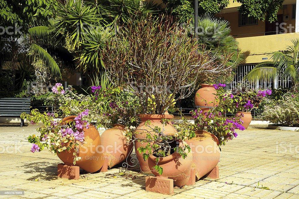 Keramik Garten Pot Stockfoto Und Mehr Bilder Von Baumblüte Istock