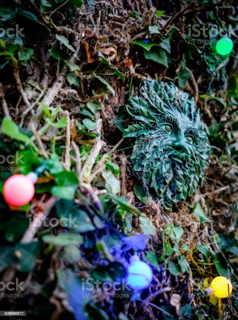 Ein Baum Befestigt Keramik Grünen Mann Zu Hause Brauen Ornament
