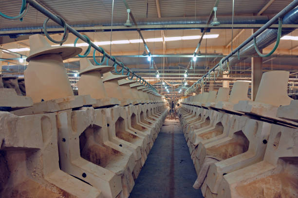 Ceramic products in the workshop production – zdjęcie