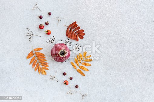 Autumn decor. Ceramic vase, berries, dry plants and leaves on gray concrete background with copy space.