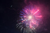 Explosion of fireworks in the night sky brightly violet and pink flowers