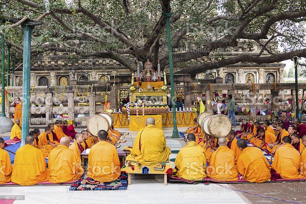 ceremony under the bodhi tree stock photo