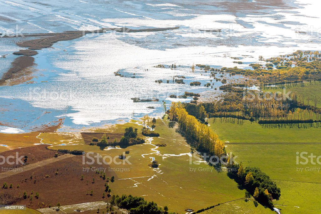 Cerknica lake,island, poplars, reeds, water, flood,Notranjska Slovenia,Europe stock photo