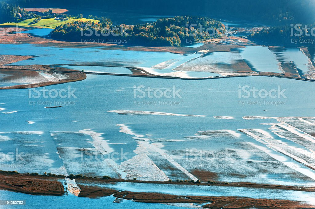 Cerknica lake,island, reeds, water, flood,Notranjska Slovenia,Europe stock photo