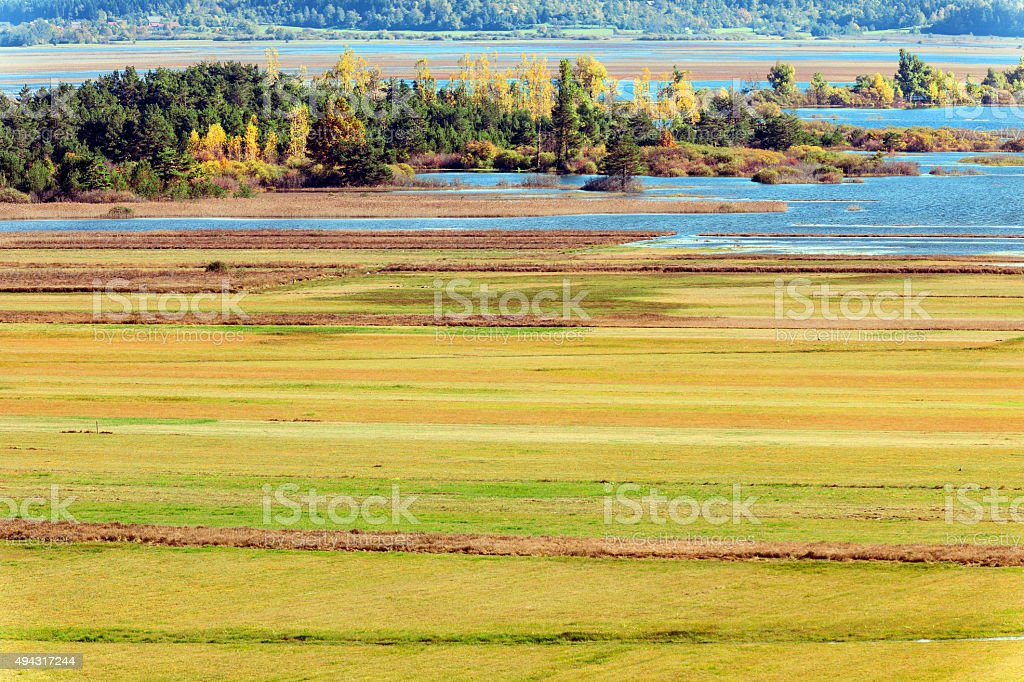 Cerknica lake,island,forest, reeds, water, flood,Notranjska Slovenia,Europe stock photo