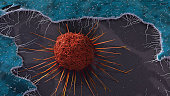 Cervical Cancer Cell
