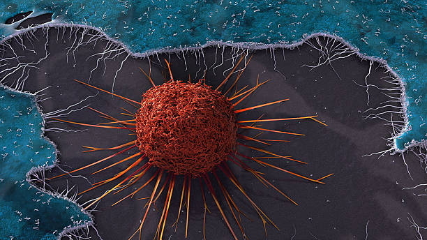 Cervical Cancer Cell stock photo