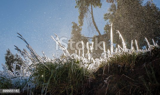 639394370istockphoto Cesped conjelado - Grass Frozen 599955182