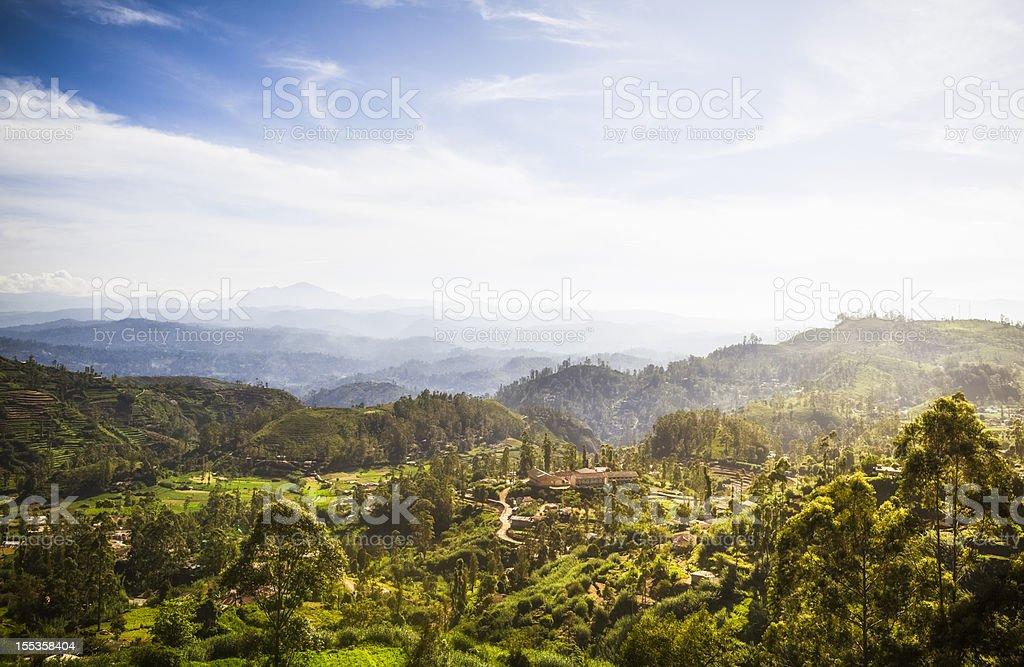Ceylon Highlands near Nuwara Eliya royalty-free stock photo