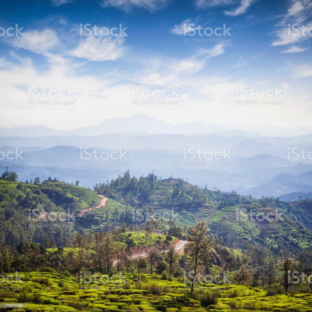 Ceylon Highlands nearby Nuwara Eliya stock photo