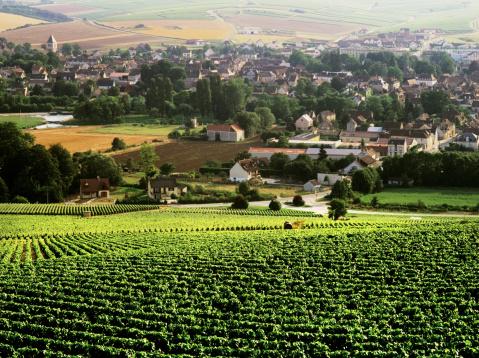 1 247 climats en Bourgogne