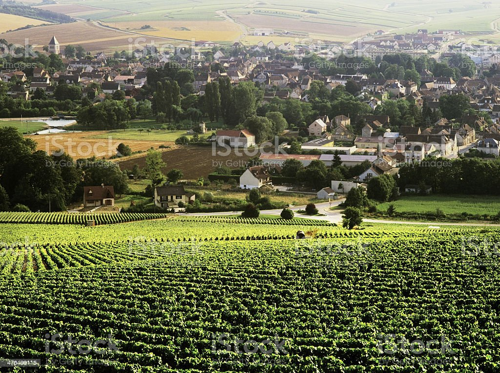 chablis stock photo