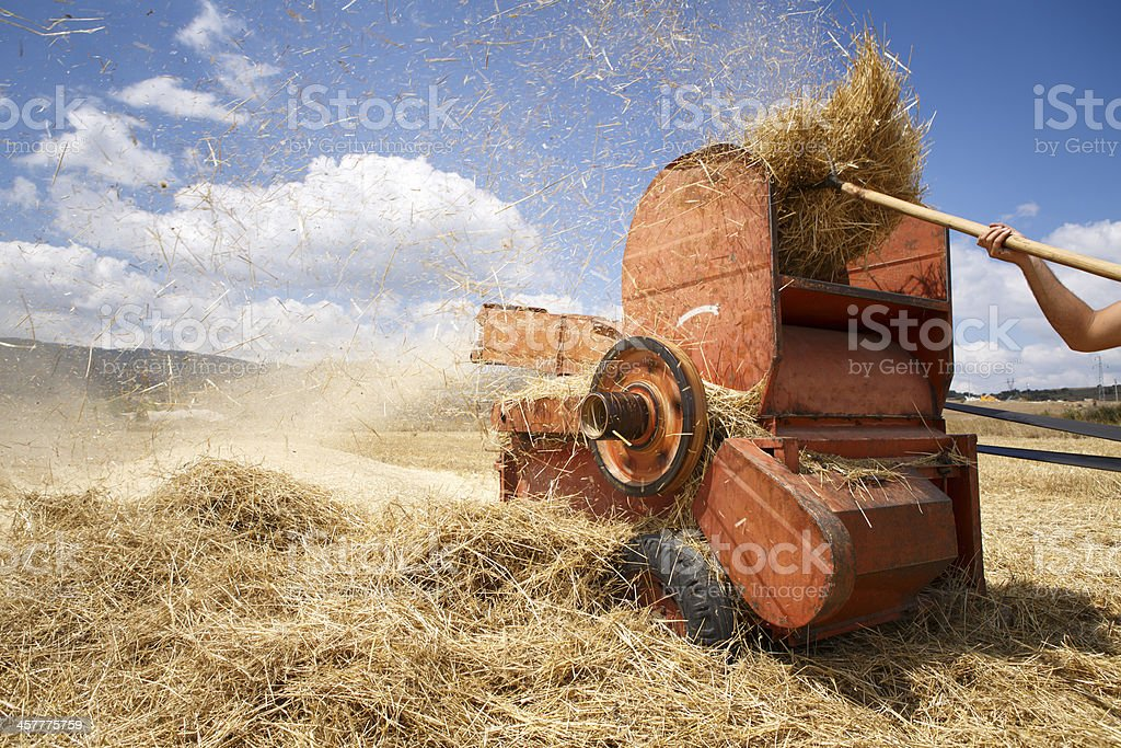 chaff-cutter stock photo