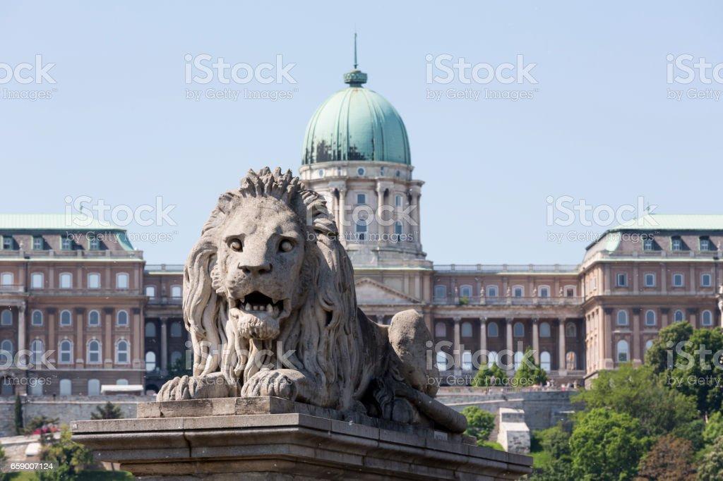 Chain Bridge lion head close-up stock photo