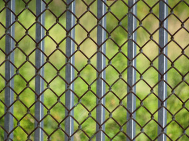 chain link fence - dianna dann narciso stock pictures, royalty-free photos & images
